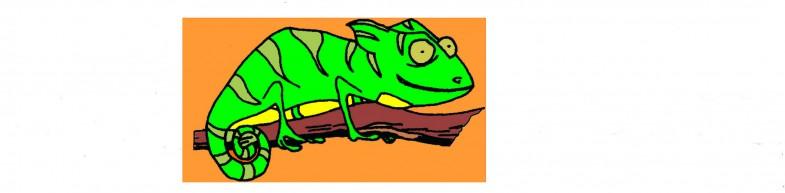 iguana colores